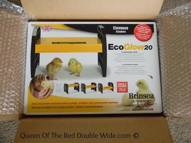 EcoGlow20
