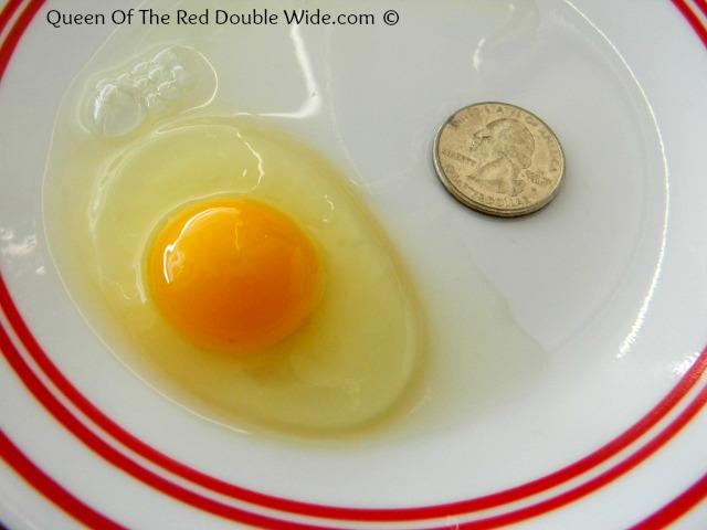 Bantie egg
